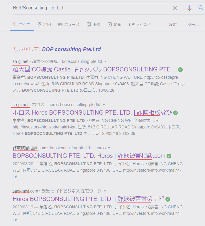 2nd owner campaign BOPSconsulting Pte.Ltd.